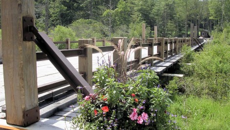 Mountain Top Resorts Bridges